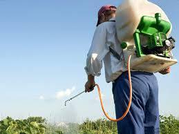 Produktu fitosanitarioak erabiltzeko ikastaroa maiatzaren 27tik 31ra Etxalarren