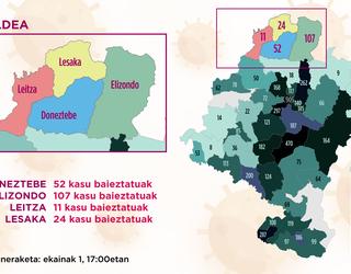 Osasunbidearen arabera Doneztebeko eremuan 52 positibo daramazkite metatuak, Elizondokoan 107, Leitzakoan 11 eta Lesakakoan 24