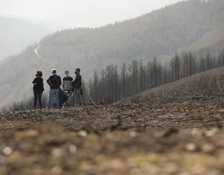 Suteek hondatutako mendien berreskuratze lanak bere gain hartuko ditu oso-osorik Nafarroako Gobernuak