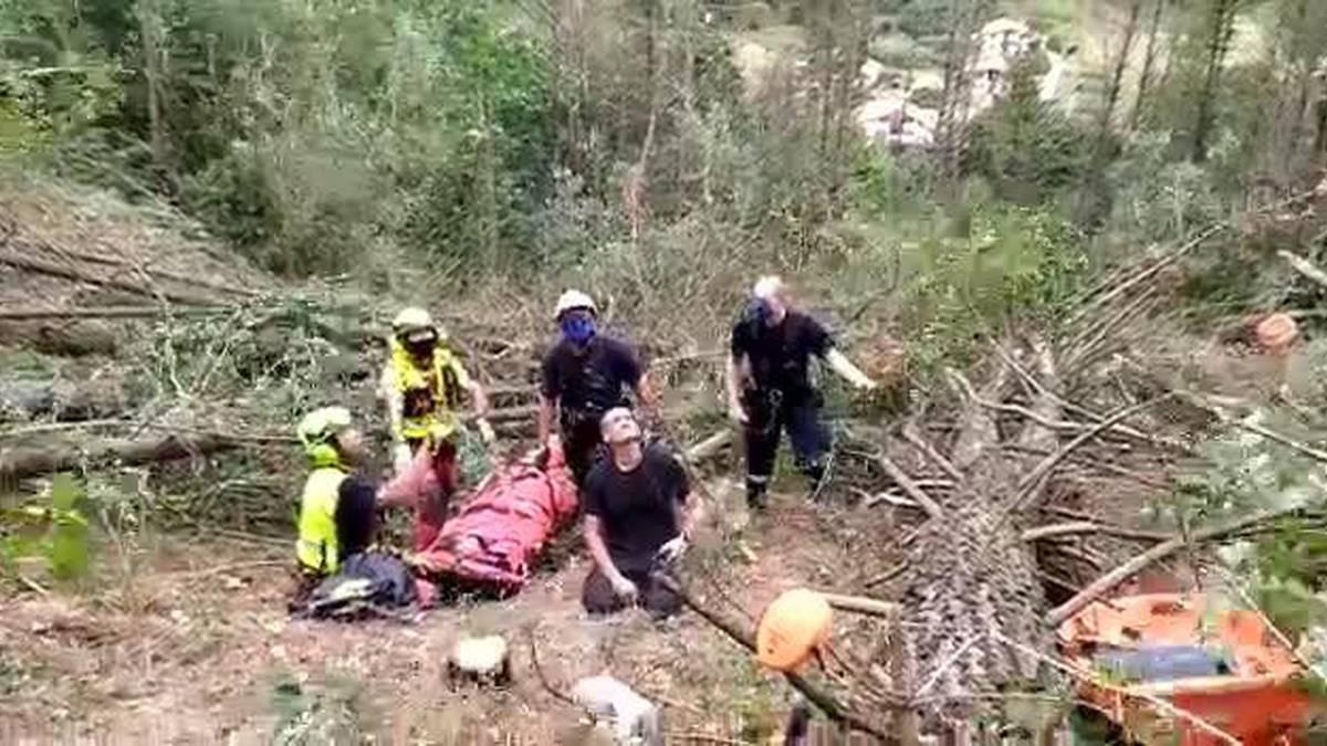 Amezti aldean zuhaitz batek kolpatuta zauritu den langilea erreskatatu dute helikopteroan