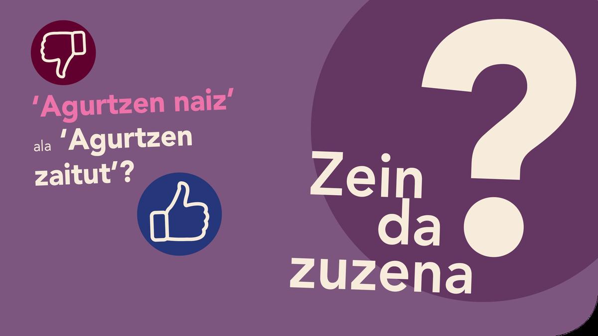 '*Agurtzen naiz' ala 'Agurtzen zaitut'?
