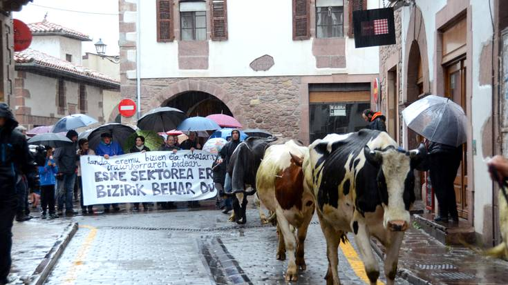 Esne sektorearen aldeko manifestazioa Elizondon